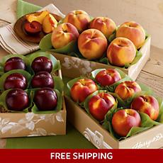 Summer Triple Treat™ Fruit Classic