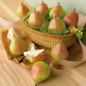 NEW Gold Spring Pear Gift Basket